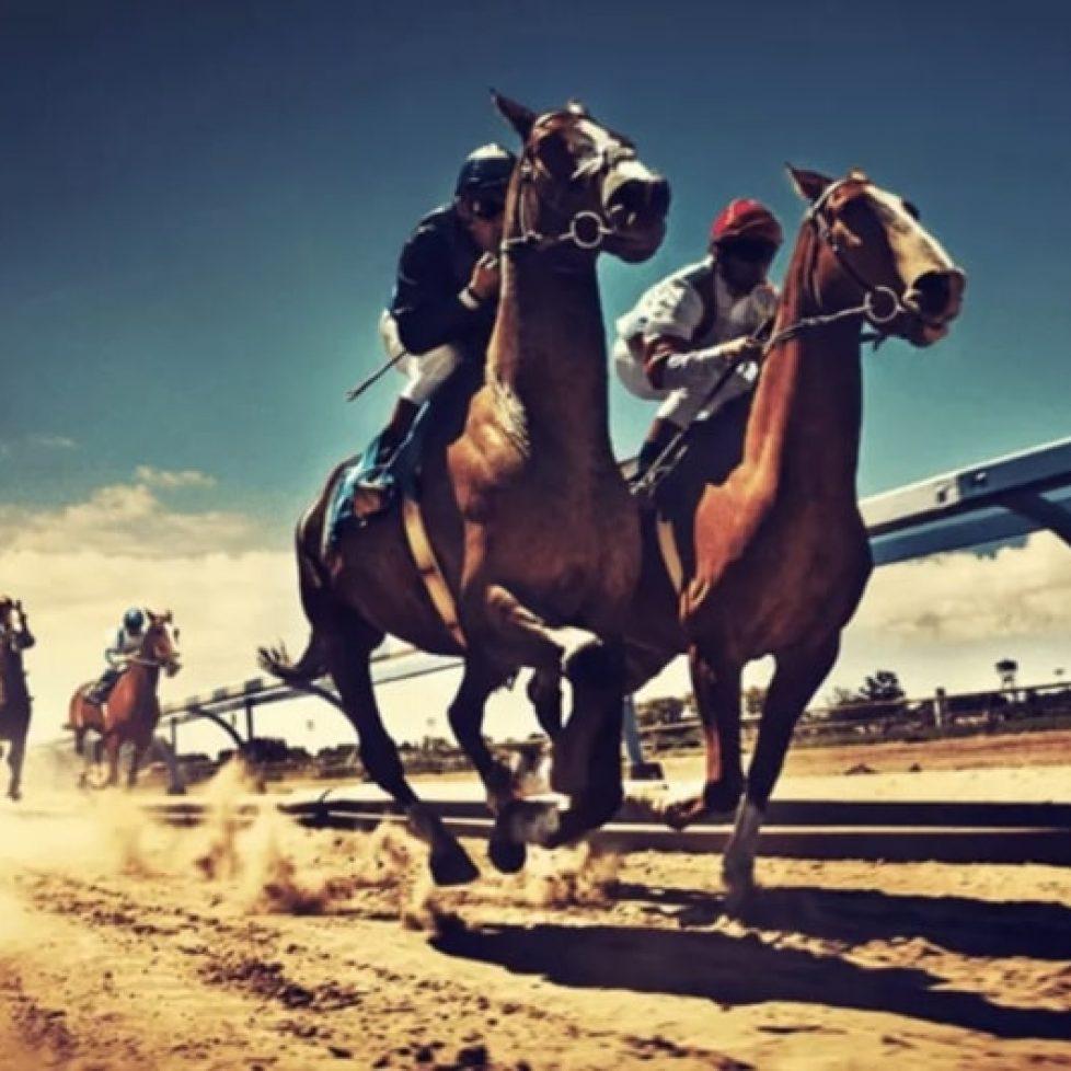 pearl glory конни надбягвания bet365