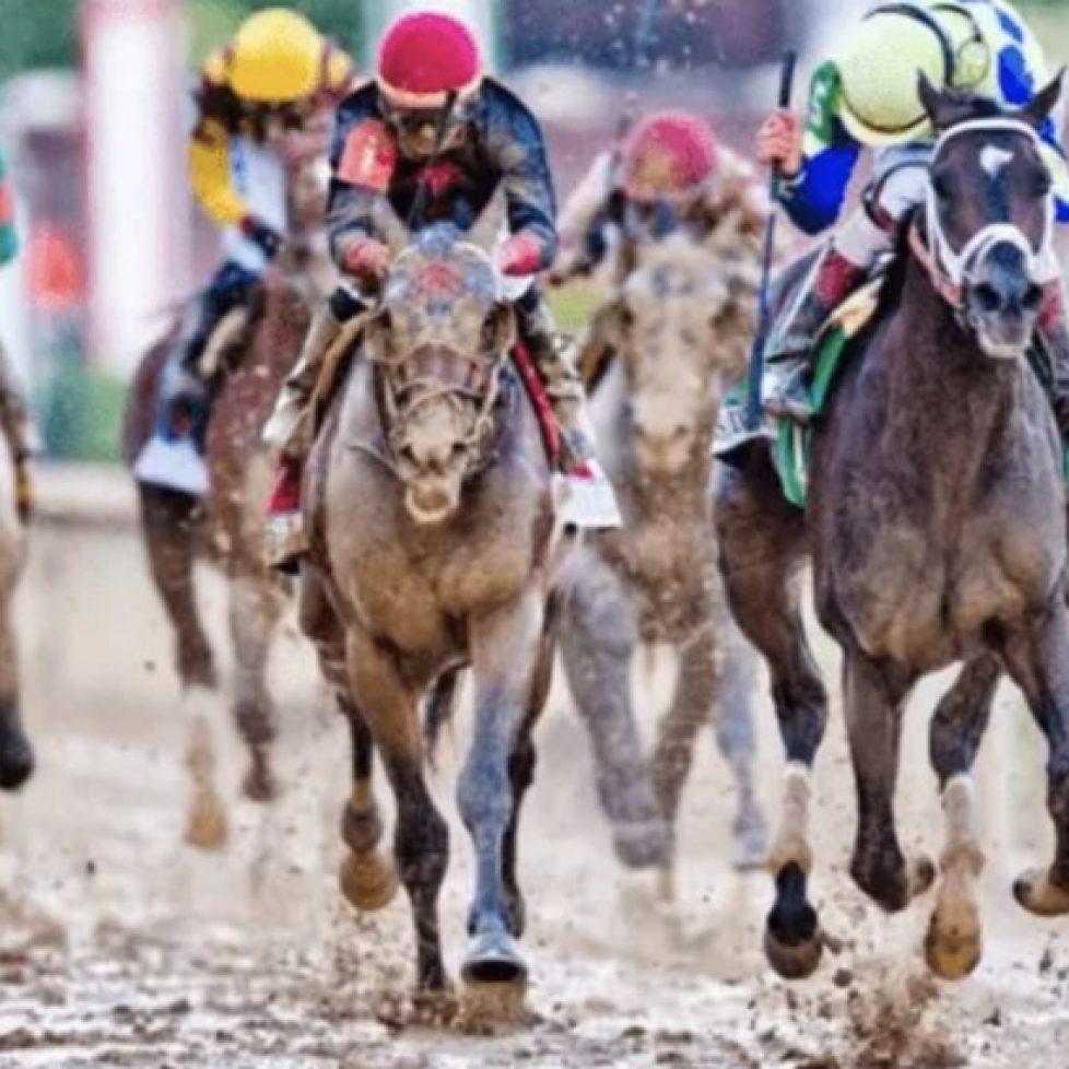 rockfire конни надбягвания bet365